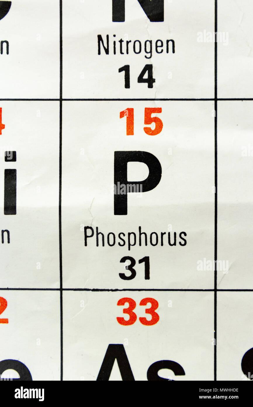 Symbol Chemical Element Phosphorus Stock Photos Symbol Chemical