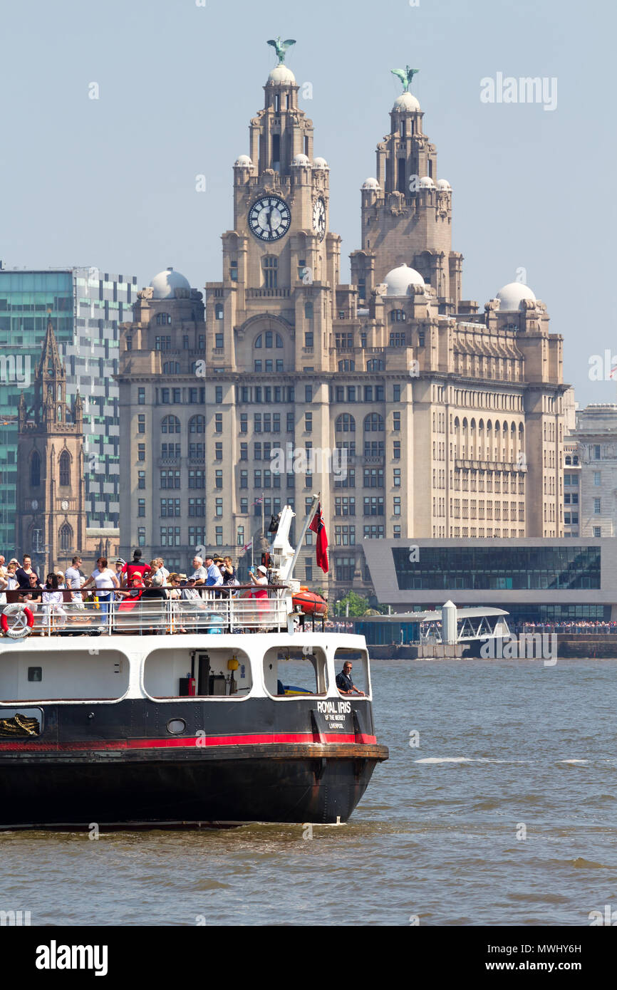 The Mersey Ferry Royal Iris sailing past the Liver Buildings on the River Mersey in Liverpool UK. - Stock Image