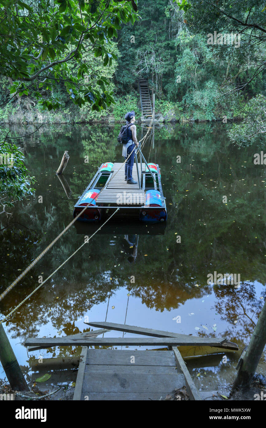 middle aged lady adventurer on a pontoon in the wilderness national park, garden route South Africa - Stock Image