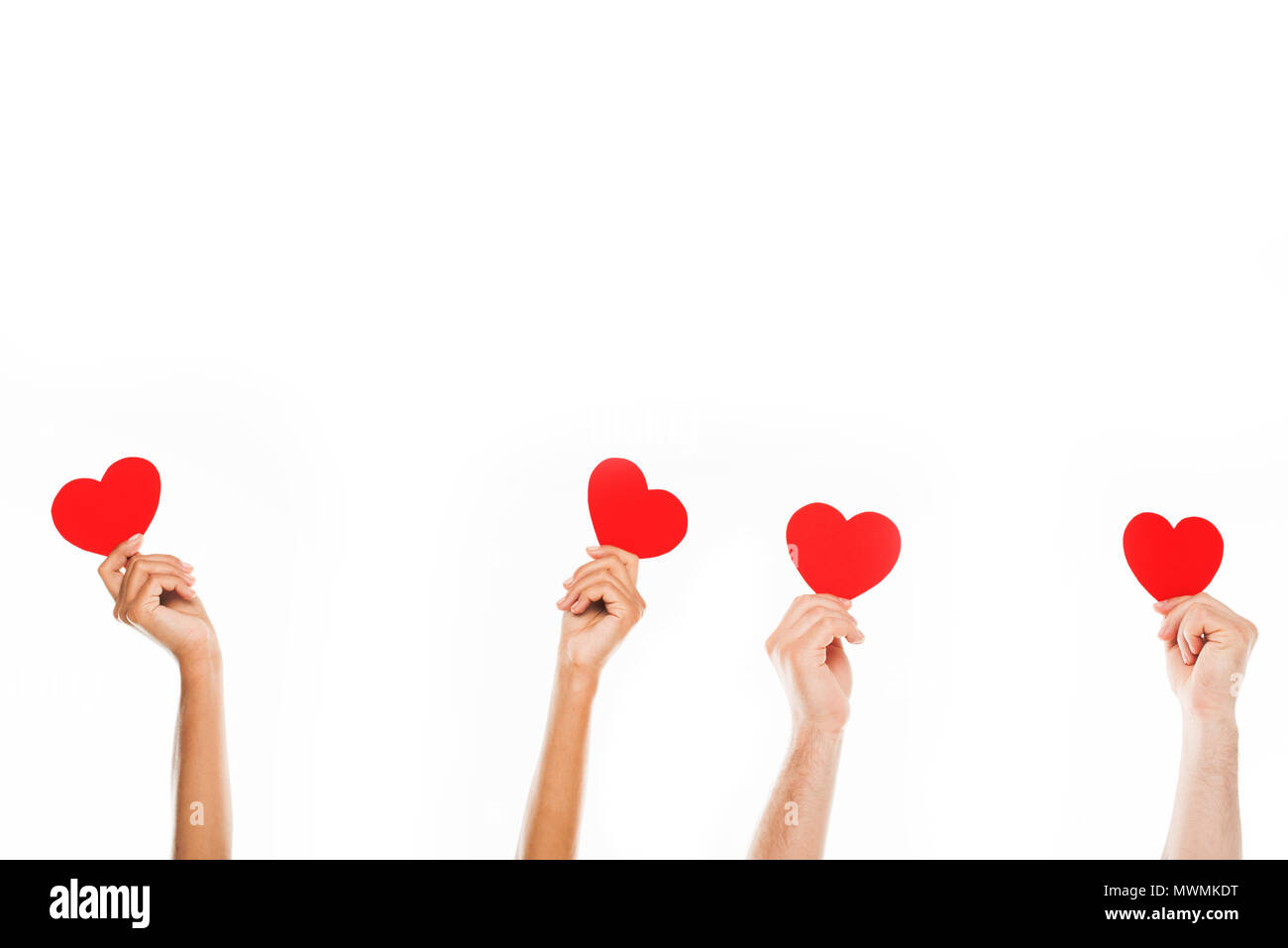 'Cropped view human hands holding red paper hearts, isolated on white - Stock Image
