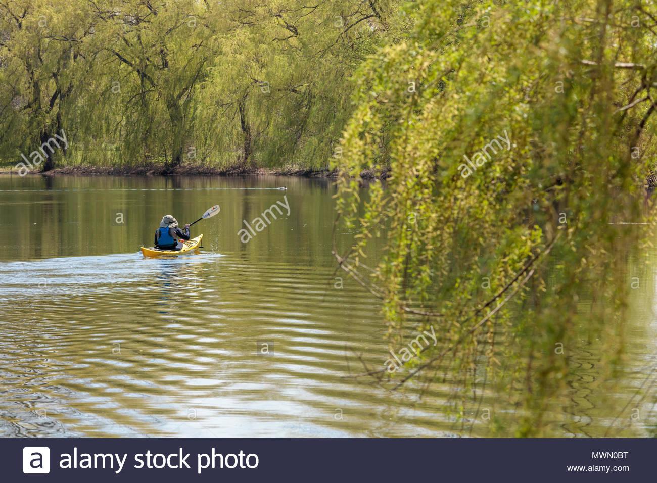 Kayak in a quiet lagoon Toronto Island Park at Toronto Ontario Canada. Stock Photo