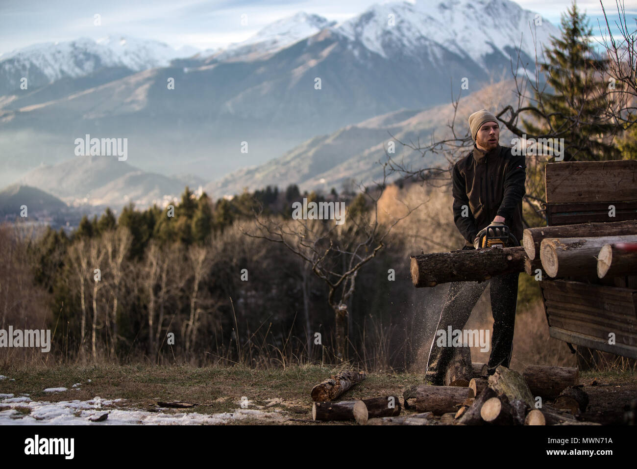 Lumberjack cutting wood with a chainsaw - Stock Image