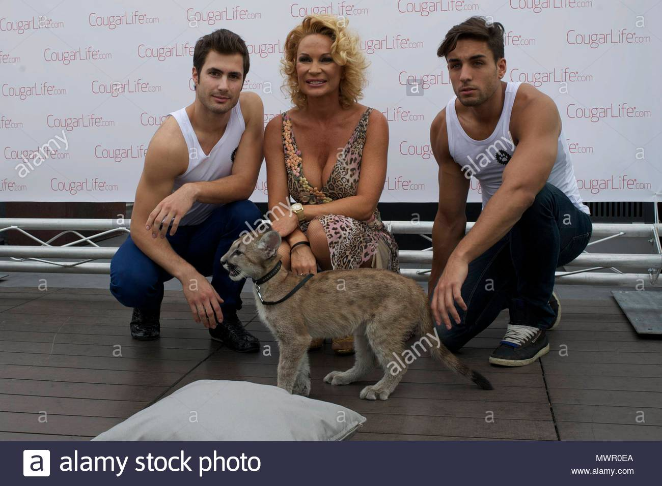 Cougar life dating