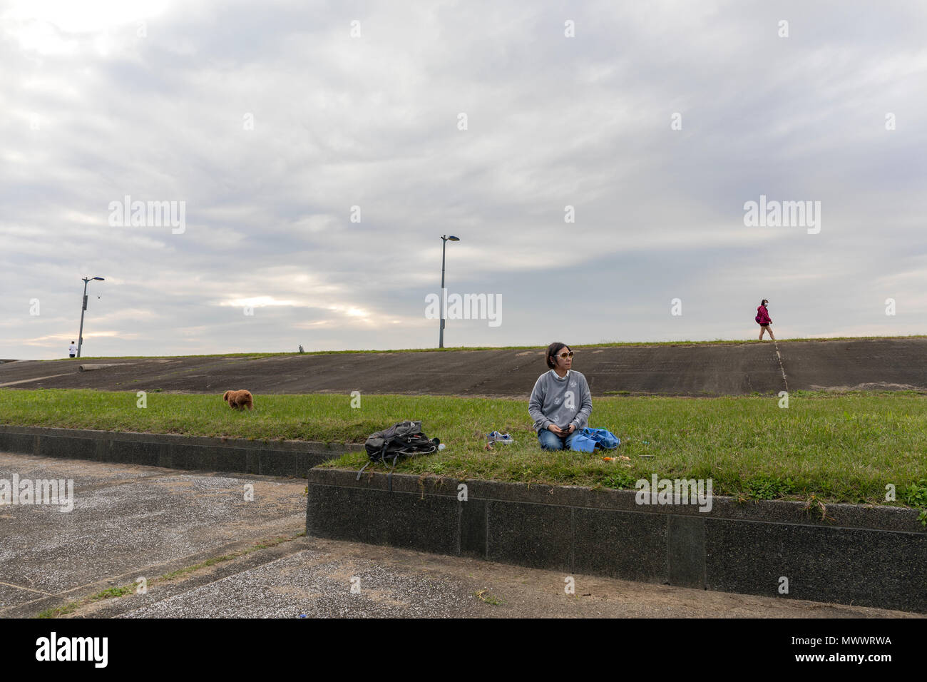 Woman sitting alone on a grass lawn under cloudy skies with her dog and two people in the distance walking away from her in different directionsdiscon - Stock Image