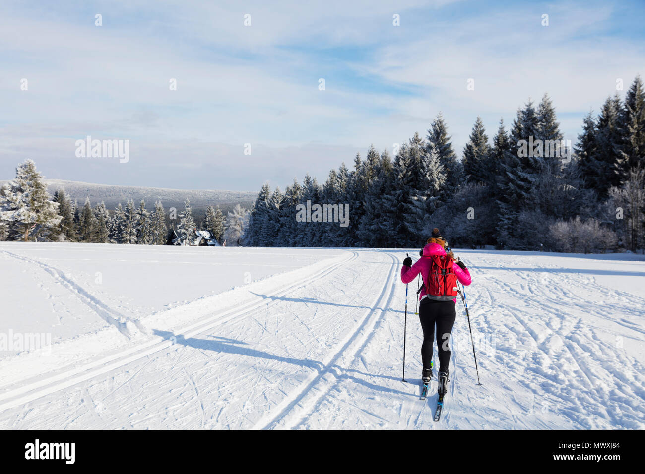 Cross country ski location, Liberec, Czech Republic, Europe - Stock Image