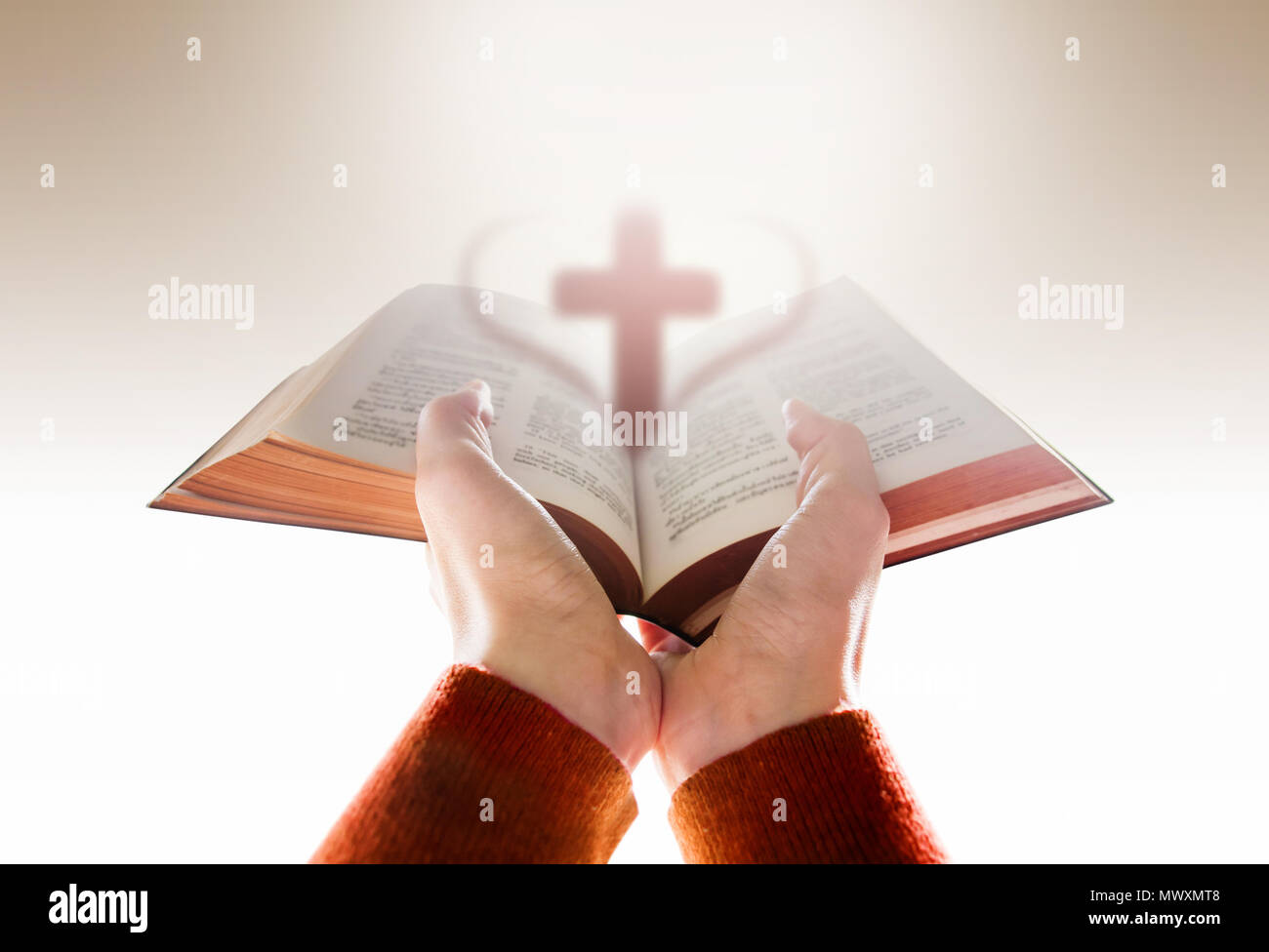 Hands of Woman Raise up a Bible for Praying with Blurred Shape of Cross and  Heart