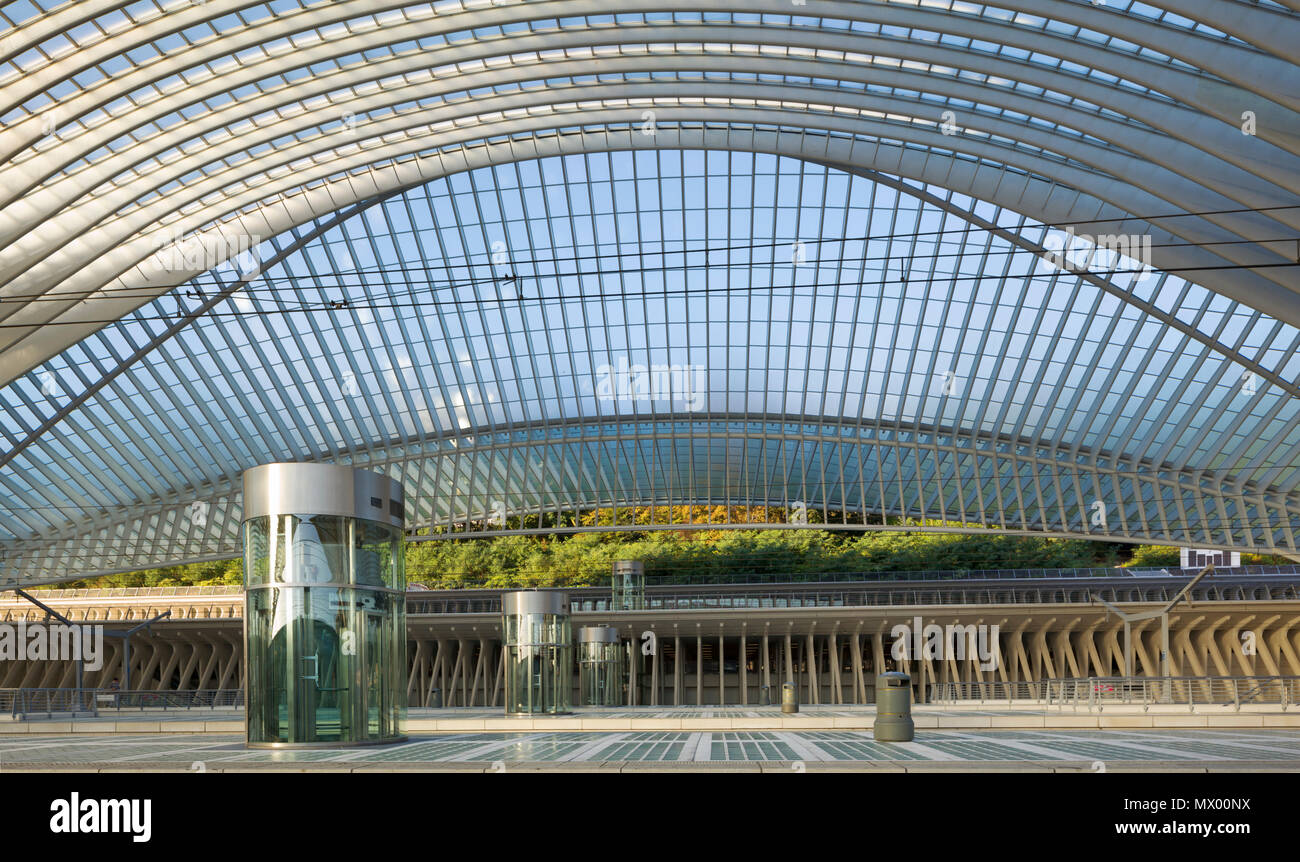 Liège Guillemins train stations arched roof constructed from steel and glass stretches over 160m and has a hight of 32m. The glass tiles of platforms  - Stock Image