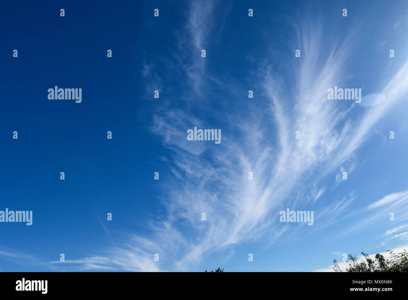 Wispy cloud in a blue sky abstract - Stock Image