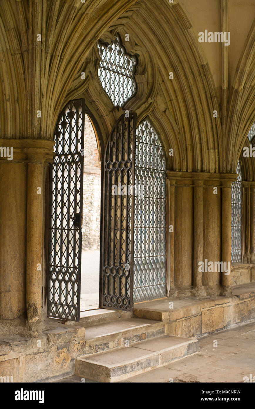 Norwich cathedral vaulted walkways - Stock Image