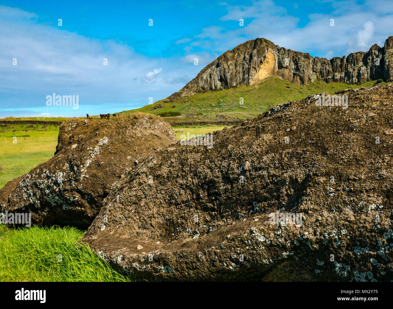 Fallen Moai head, Tongariki archaeological site with steep cliff of Rano Raraku extinct volcano crater, site of Moai head quarry, Easter Island, Chile - Stock Image