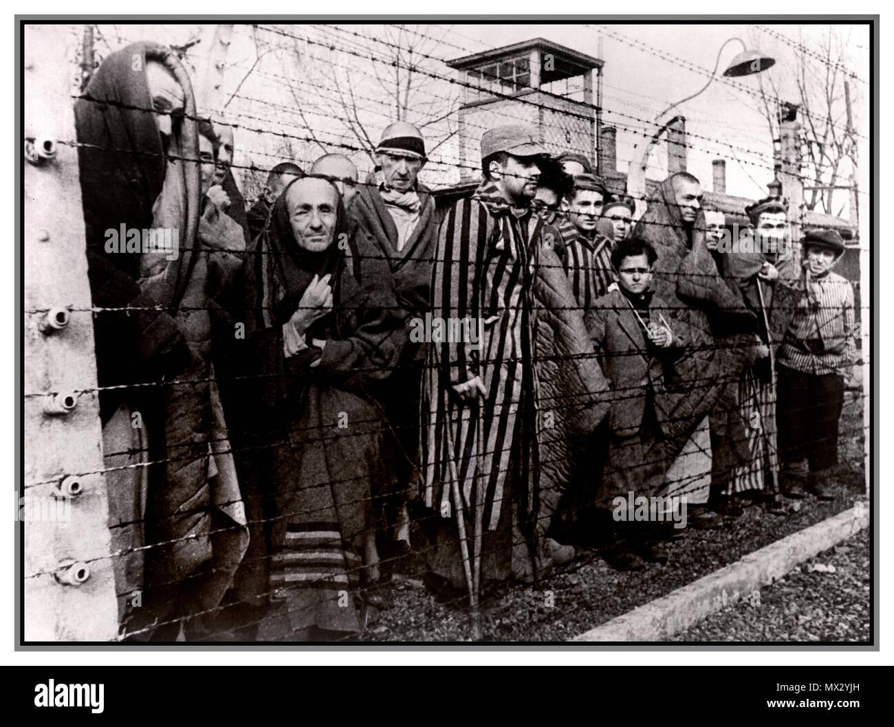1940's holocaust ww2 auschwitz -birkenau nazi germany concentration