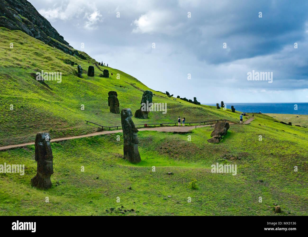 Unfinished and abandoned Moai heads, Rano Raraku quarry, Easter Island, Rapa Nui, Chile - Stock Image