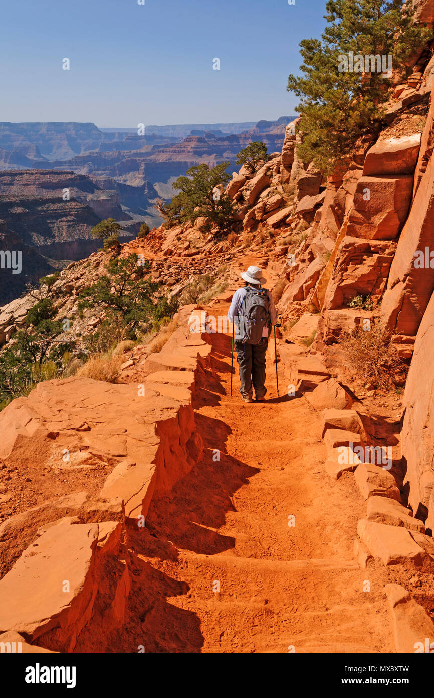 Hiker Hading down the South Kaibab trail in the Grand Canyon - Stock Image