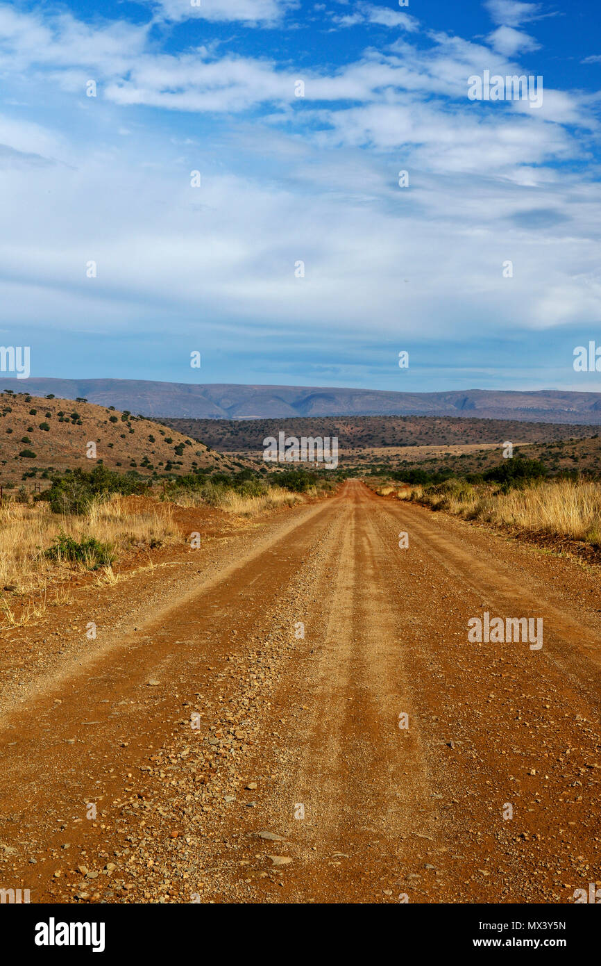 Red unpaved dirt road landscape in the Addo Elephant National Park, eastern cape, south Africa - Stock Image