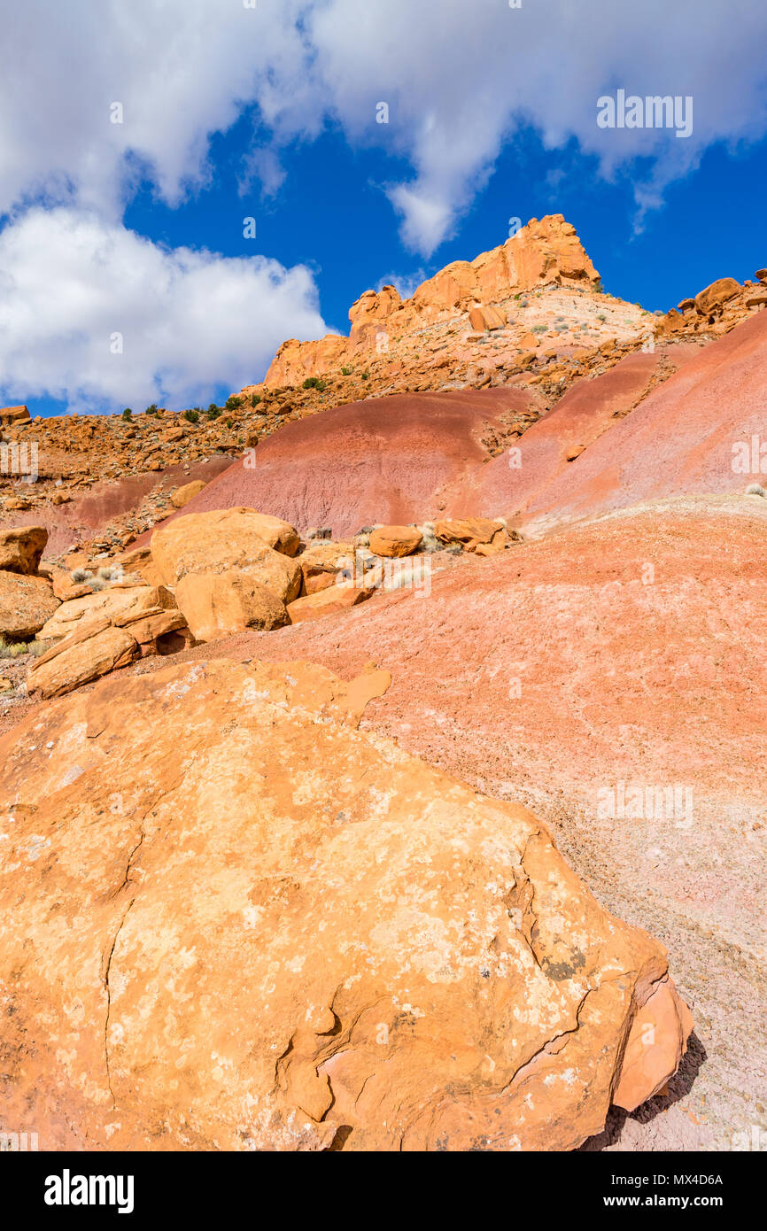 Colorful soils and rock formations near Wolverine Creek along the Wolverine Loop Road in Grand Staircase-Escalante National Monument, Utah USA. Stock Photo