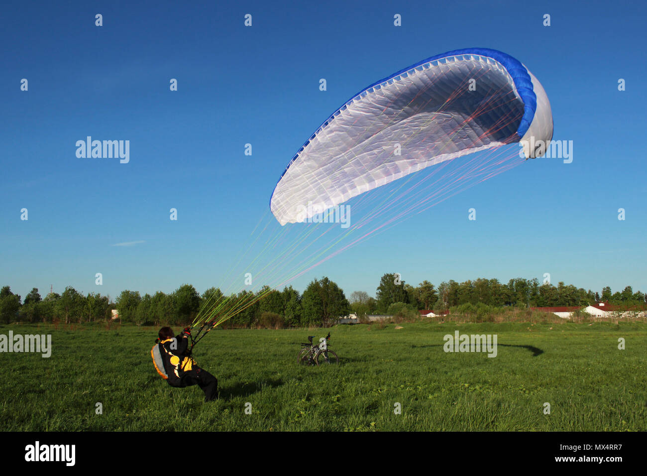 pilot newcomer paraglider is trained on the ground to lift up and hold the blue-white paraplane. Stock Photo