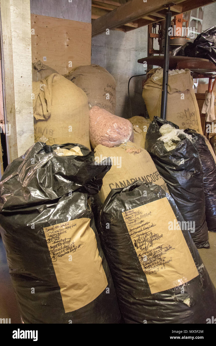 Sacks of washed fleece waiting to be processed at Custom Woolen Mills, Carstairs, Alberta. - Stock Image