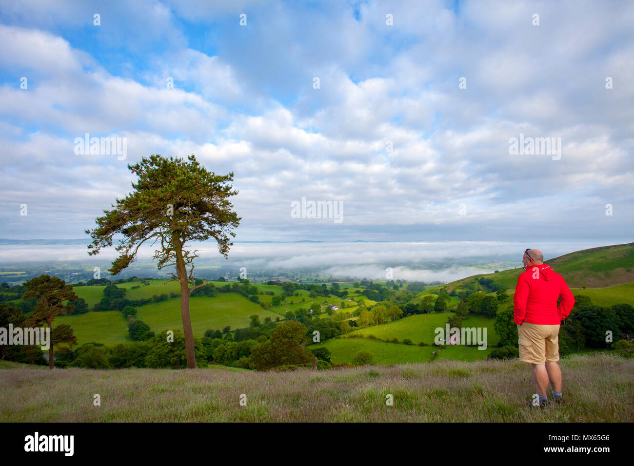 North Wales, UK Weather:  A warm start to the day in North Wales with pockets of low level fog in areas.  A walker taking in the view and the last of the fog caused by a weathe inversion in the appropriately named Vale of Clwyd, Denbighshire, Wales - Stock Image
