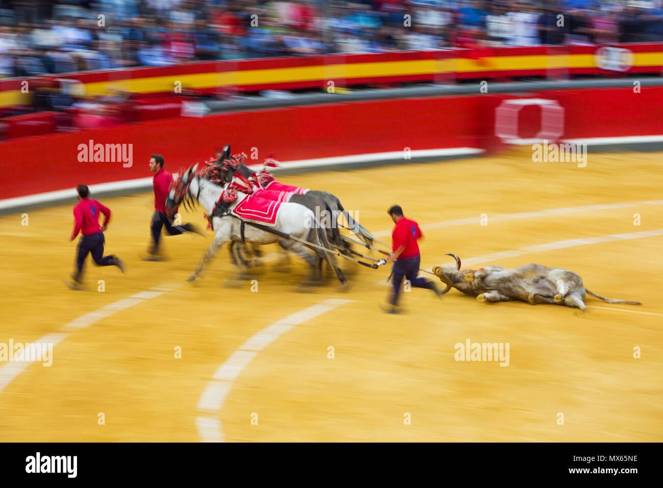 Bullring Granada Spain Stock Photos Bullring Granada Spain Stock