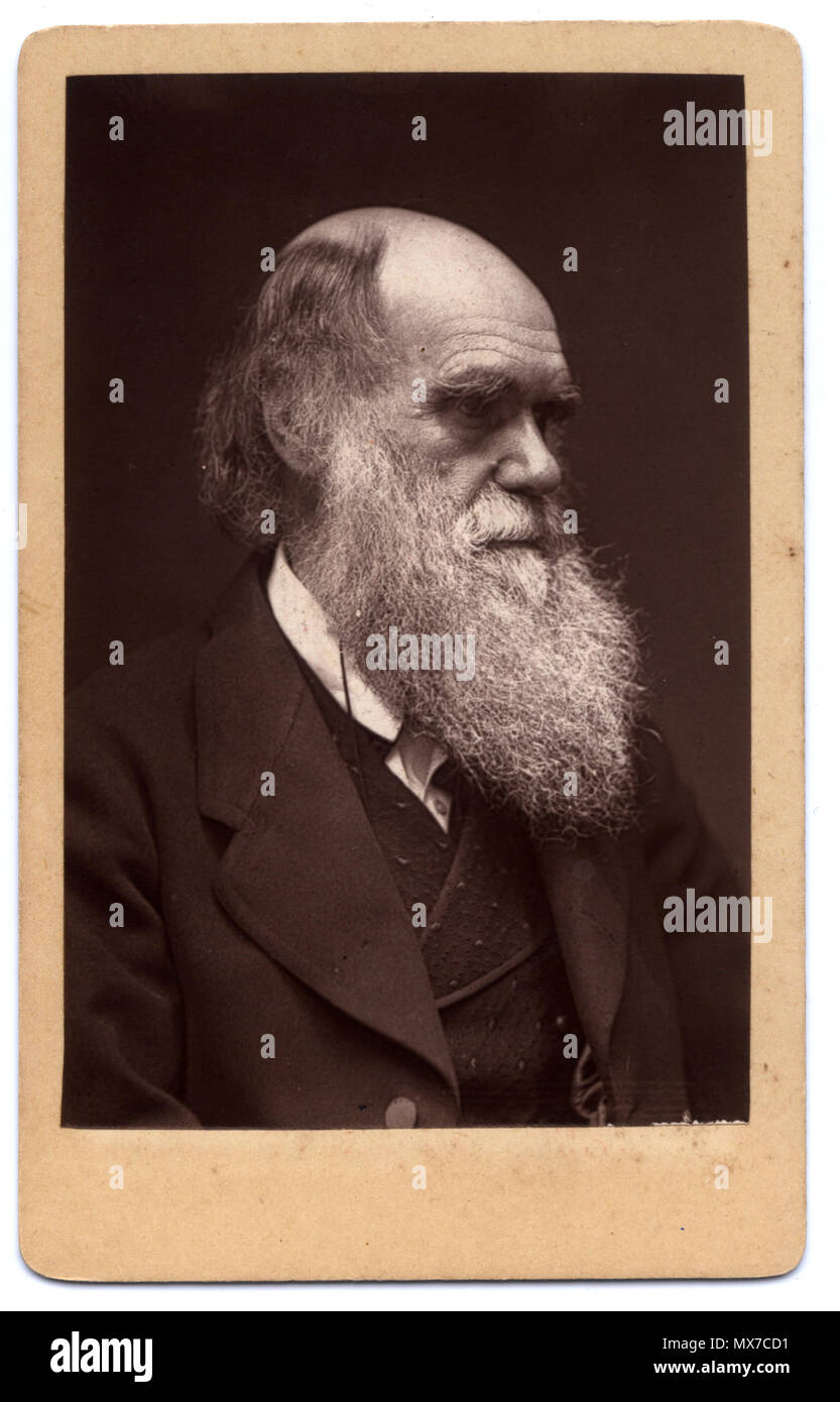 English A Woodburytype Carte De Visite Photograph Of Charles Darwin Published By John G Murdoch Although Slightly Different Pose
