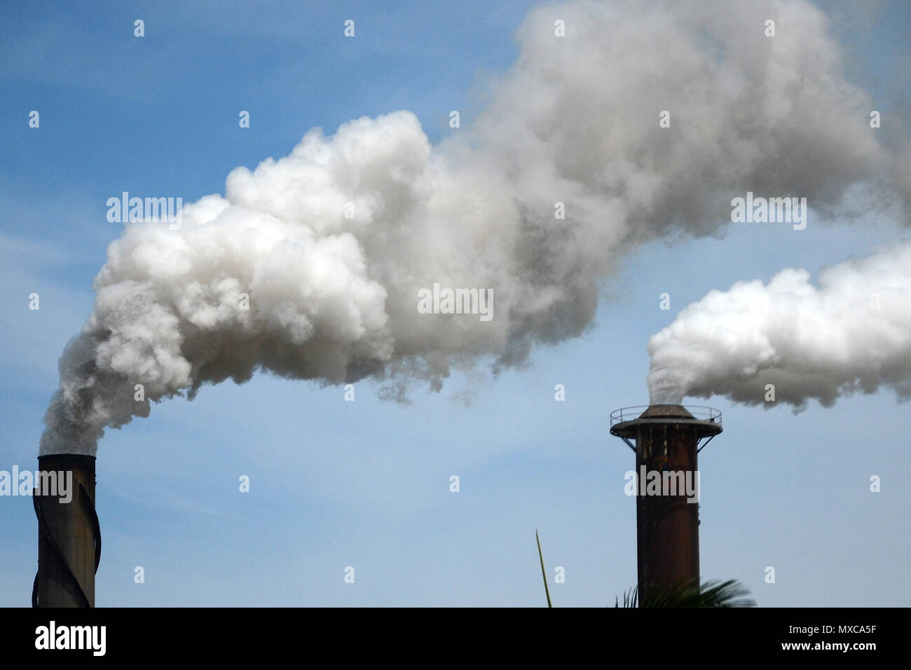 emission of toxic gasses into the atmosphere - Stock Image