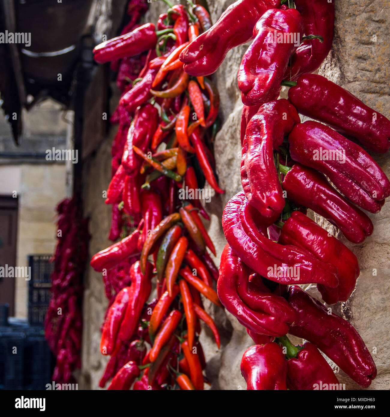 Peppers drying in the sunshine in Laguardia, Spain Stock Photo