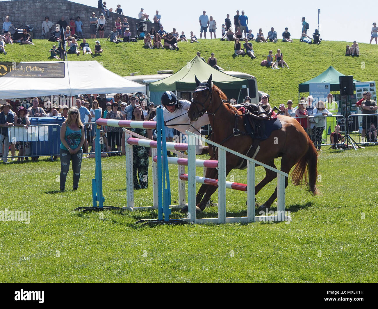 A rider falls from her horse during a showjumping event - Stock Image