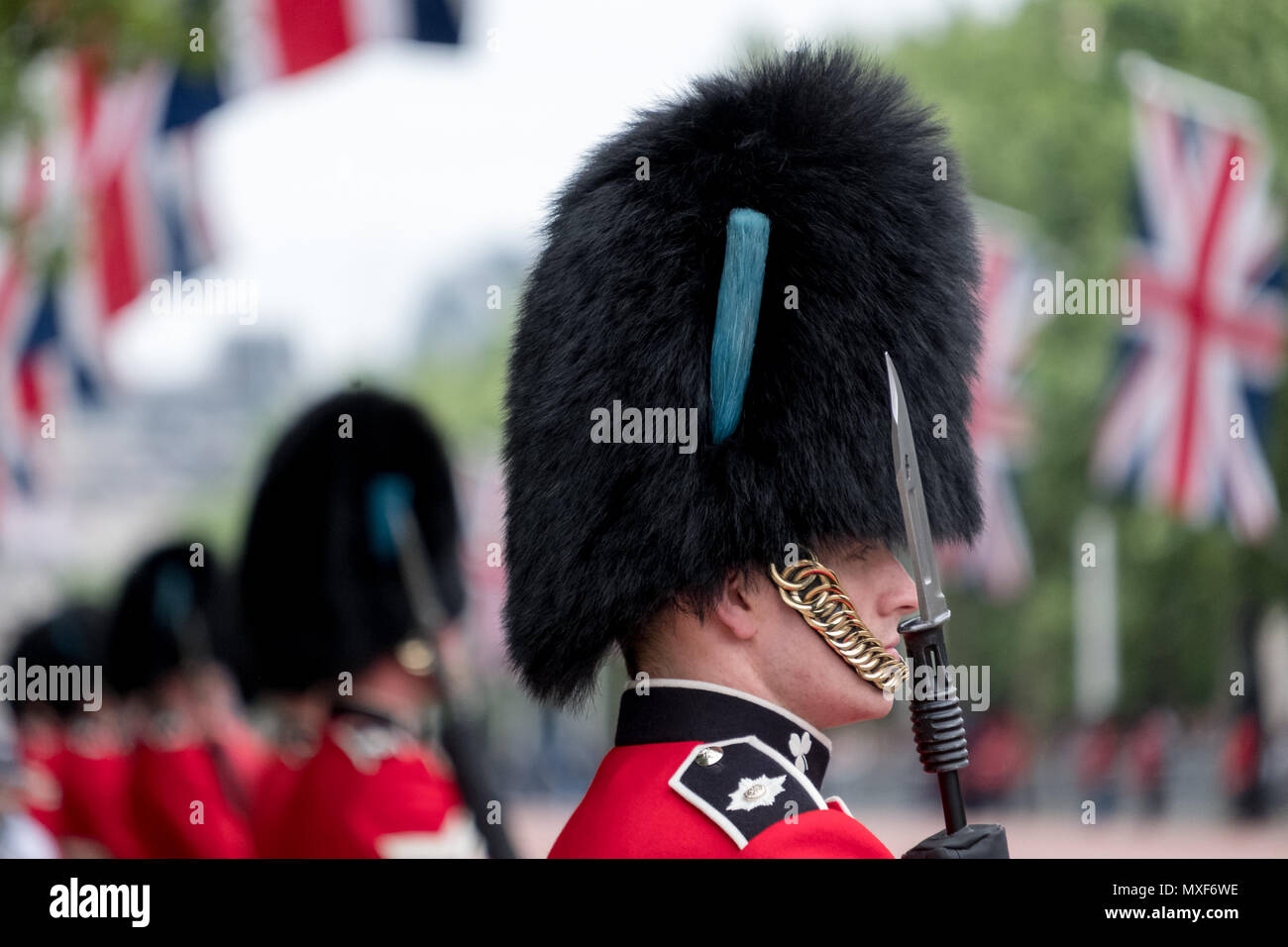 ff883cd5526 Royal Guard soldier in red and black uniform and bearskin hat