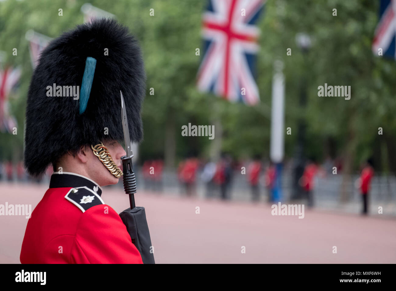 royal guard soldier in red and black uniform and bearskin hat lines