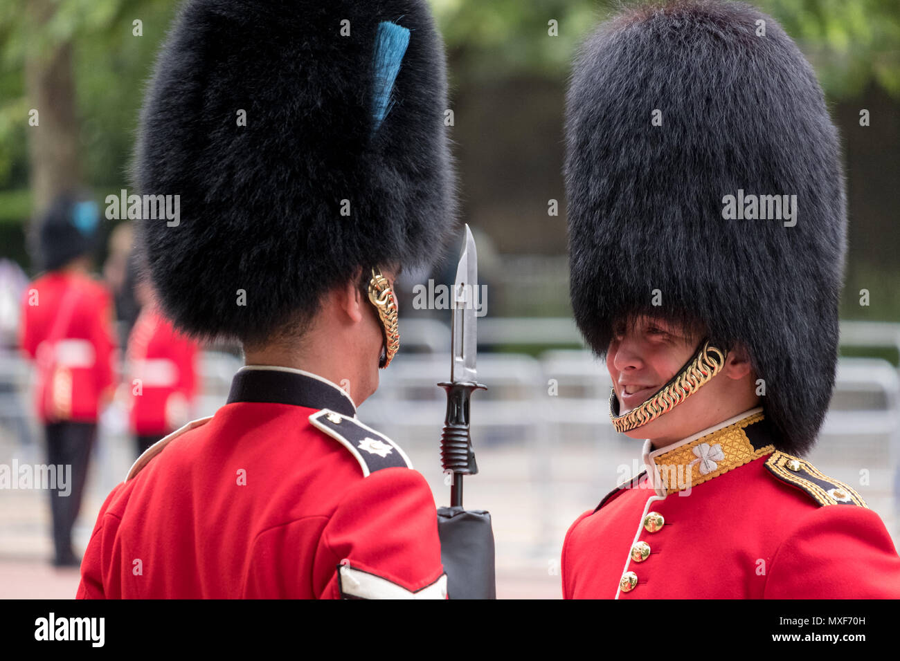 Royal Guard soldiers wearing red and black uniform and bearskin hats  sharing a joke during the Trooping the Colour military parade 11a02b03523c