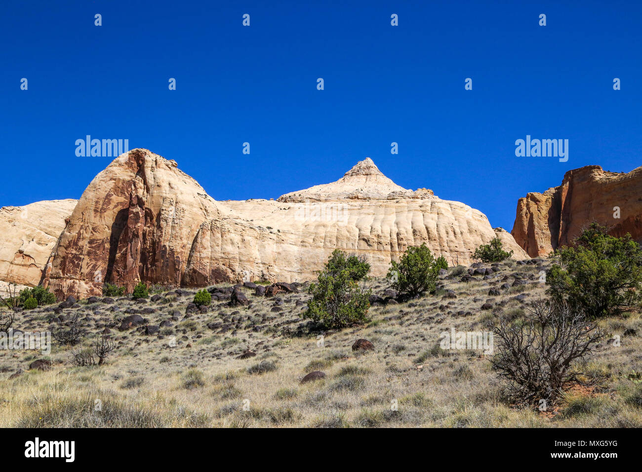 A slickrock dome by the Hickman Bridge Hiking Trail in Capitol Reef National Park, Utah - Stock Image