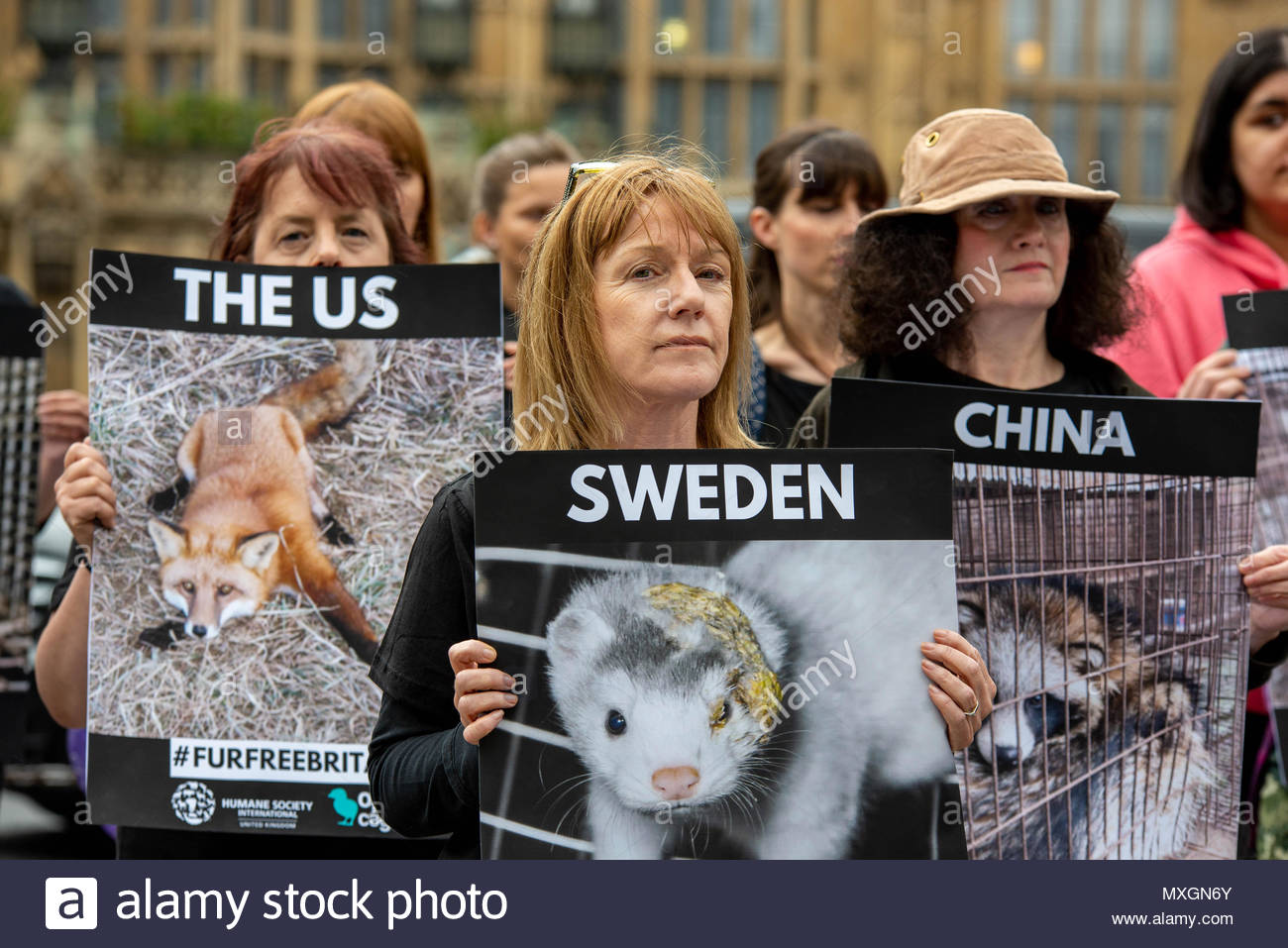 London, Great Britain, 04 Jun 2018 On the day that Parliament will have a debate on wether or not to ban the import of fur, activists organise a silent protest outside Parliament.   Credit: David Nash/Alamy Live News - Stock Image