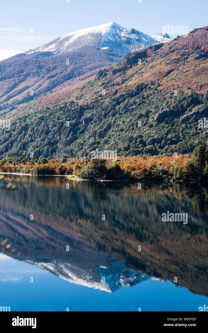 Autumn Colors in Lake Gutierrez, near Bariloche, Patagonia, Argentina - Stock Image