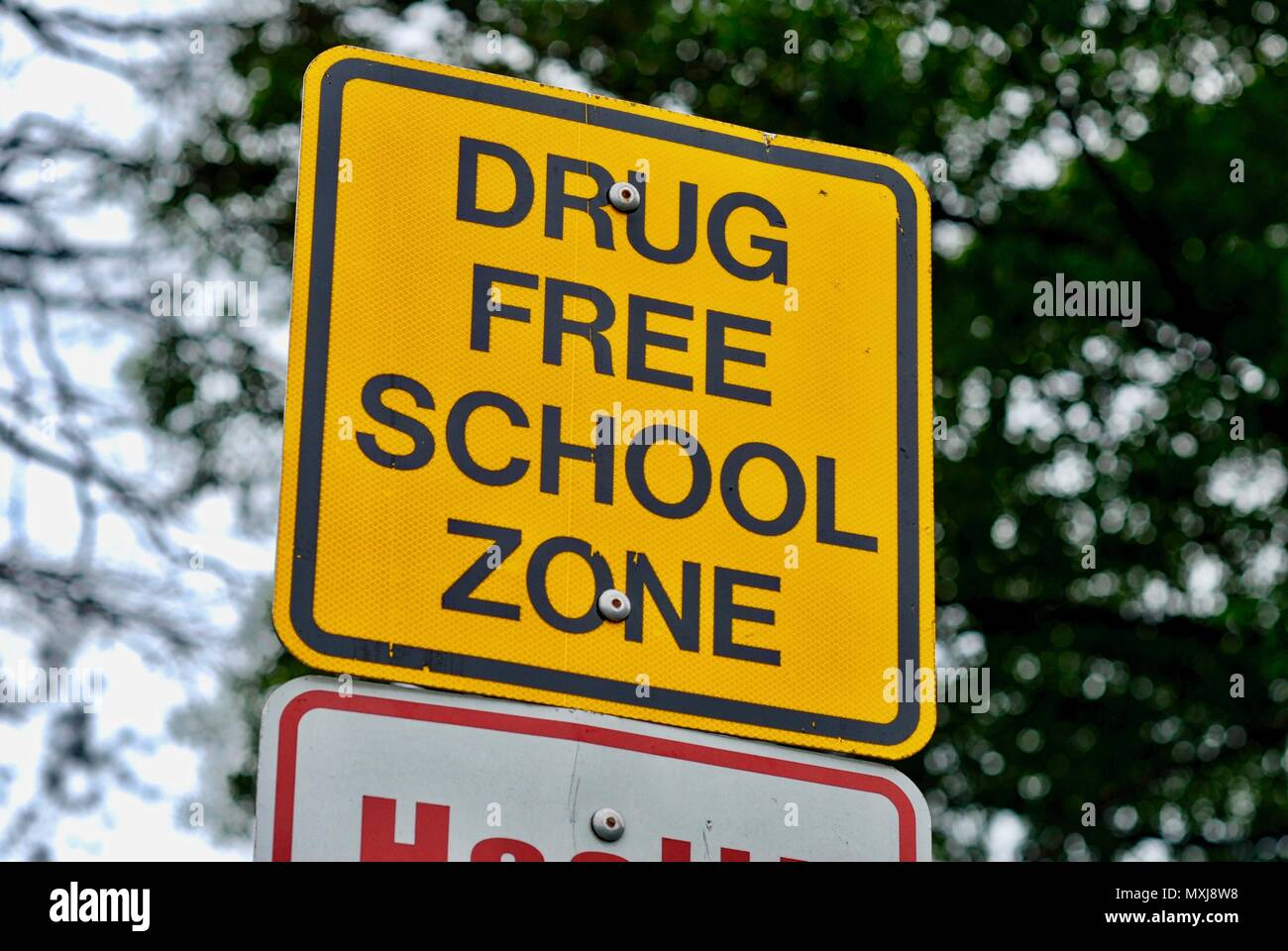 Close-up image of a sign near a school warning that it is a 'drug free school zone'. Background includes tree limbs and the sky. - Stock Image