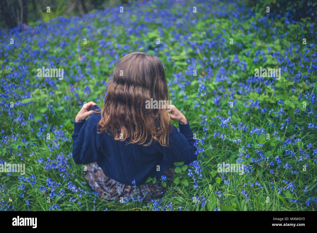 A young woman is sitting in a meadow of bluebells - Stock Image