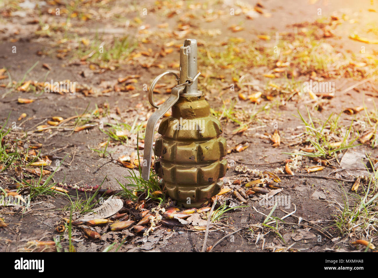 grenade lying on the ground. Hand grenade F-1. abandoned lost pomegranate greenfragmentation grenade. - Stock Image