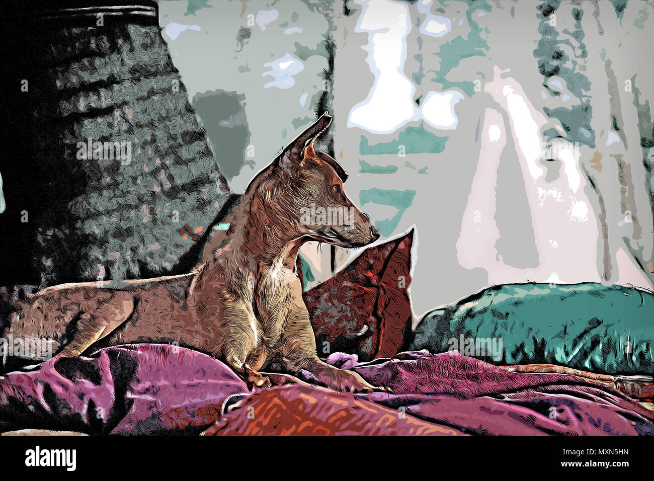 Illustration of a dog laying in bed outside and looking to the right during summer. - Stock Image