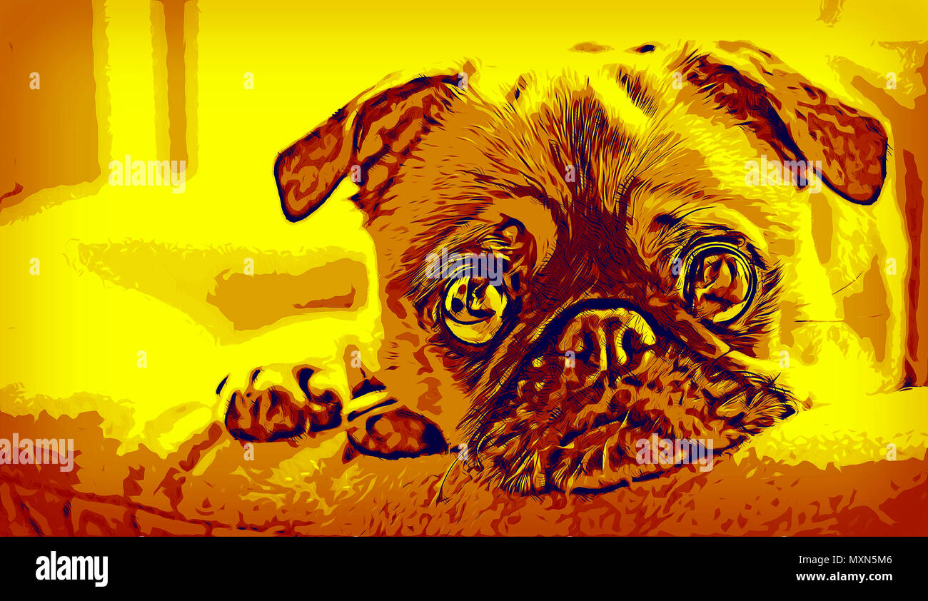 Illustration of a pug puppy laying on bed and looking at the camera - Stock Image