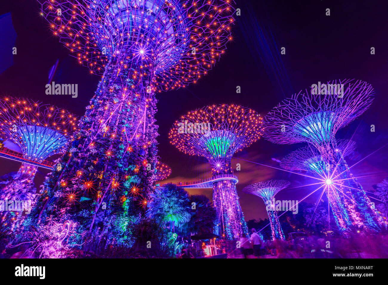 Singapore  April 29, 2018: Supertree Grove at Gardens by the Bay during Light Show with purple