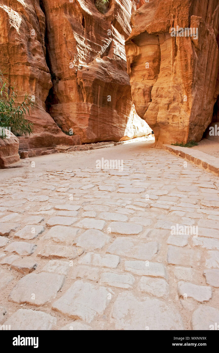 ancient pavestones, Siq of Petra, canyon of Petra Archaeological Park, Petra, Jordan, Asia Minor / Petra | antike Pflastersteine, gepflasterte Strasse - Stock Image