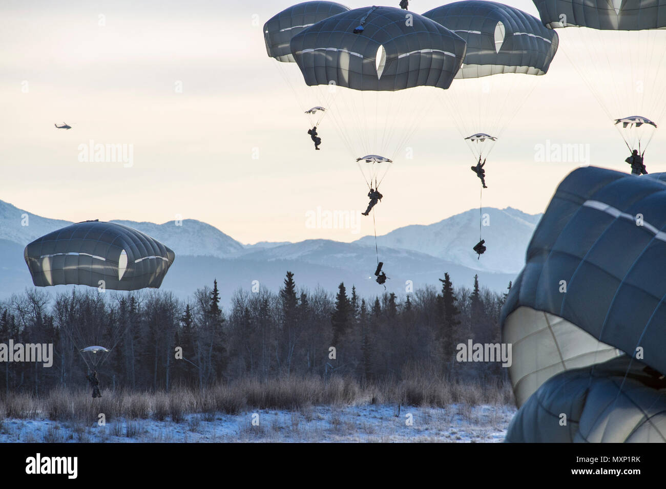 U.S. Army paratroopers, assigned to A Battery, 2nd Battalion, 377th Parachute Field Artillery Regiment, 4th Infantry Brigade Combat Team (Airborne), 25th Infantry Division, U.S. Army Alaska, descend onto Malemute drop zone while conducting airborne and live fire training at Joint Base Elmendorf-Richardson, Alaska, Nov. 22, 2016. Following a heavy equipment drop and parachute assault, the paratroopers honed their skills by setting up and firing a 105 mm howitzer. The Soldiers of 4/25 IBCT belong to the only American airborne brigade in the Pacific and are trained to execute airborne maneuvers i - Stock Image