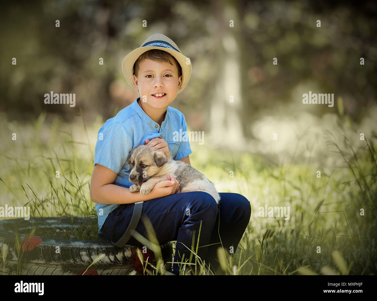 cute boy with a dog Stock Photo