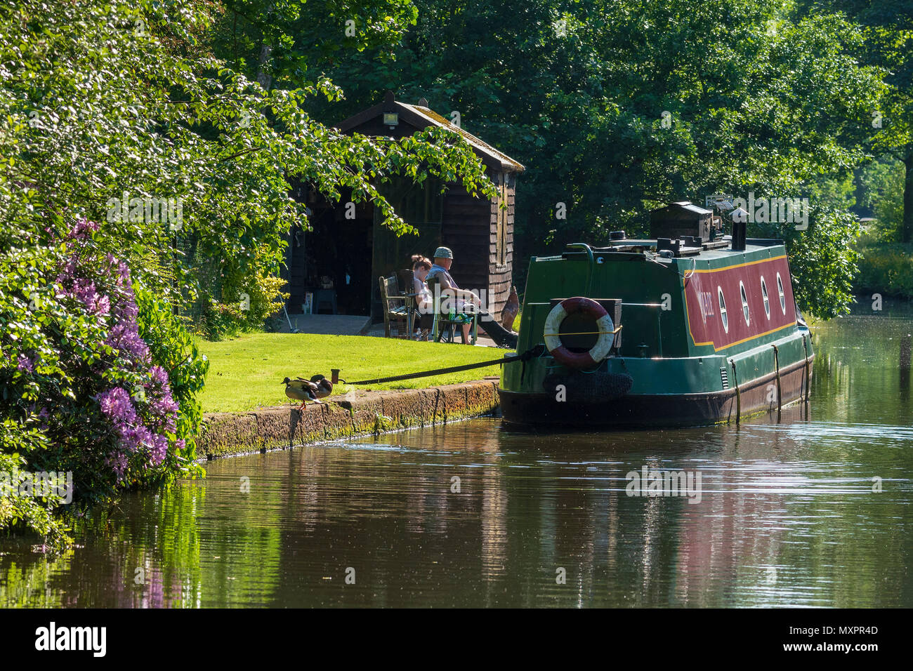 Canalbank garden narrowboat - Stock Image