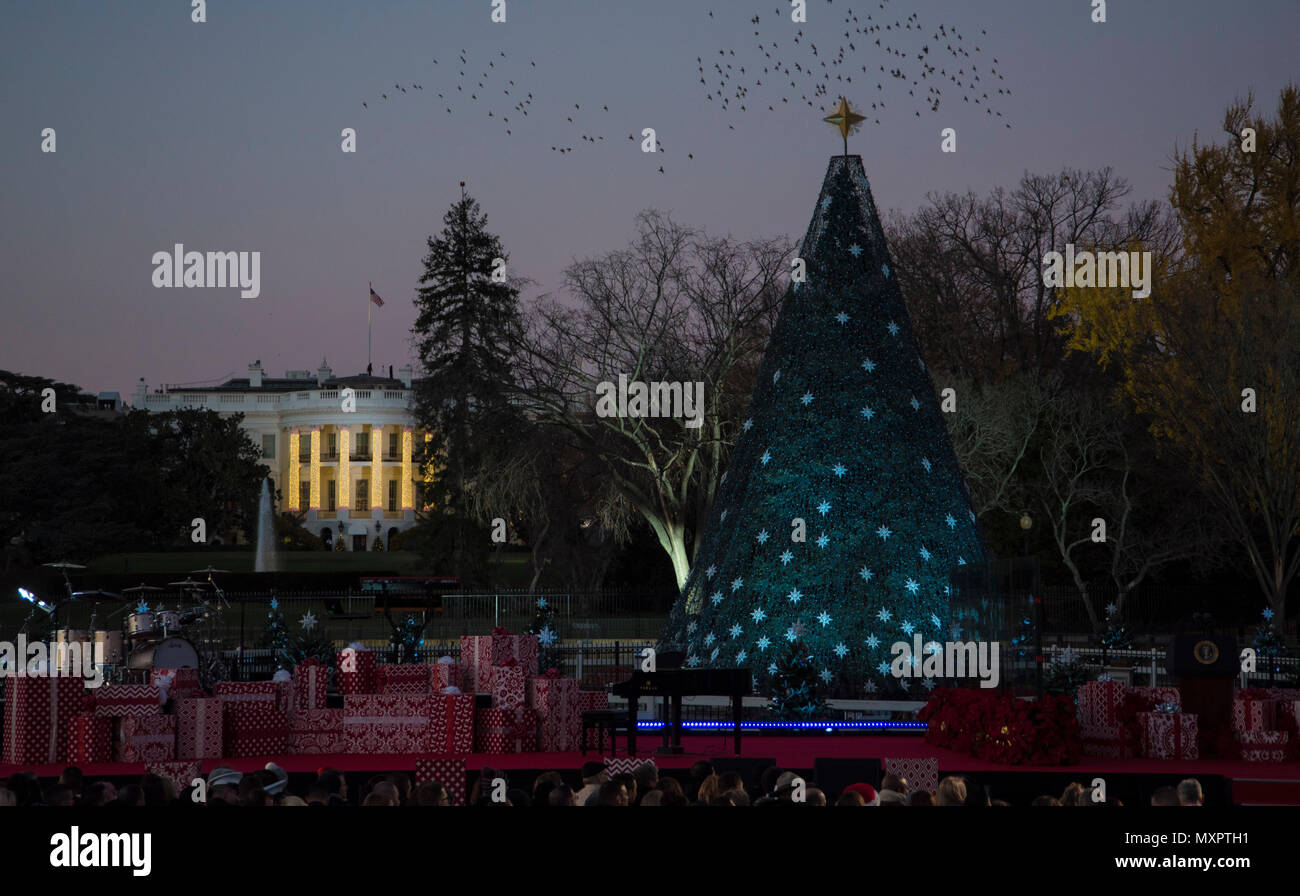 The National Christmas Tree remains unlit before the 2016 National Christmas Tree Lighting Ceremony in Washington, D.C., Dec. 1, 2016. The annual tree lighting tradition began in 1923 and has continued every year since. This year's event included performances from a variety of artists, a storybook reading, and a speech by President Barack Obama. (U.S. Air Force photo by Senior Airman Jordyn Fetter) - Stock Image