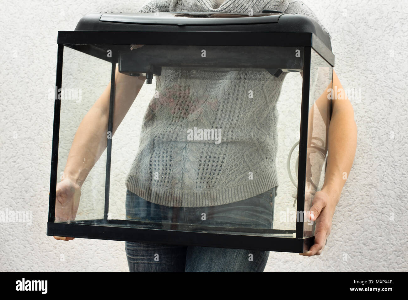 woman holding empty aquarium to restart it at home - Stock Image