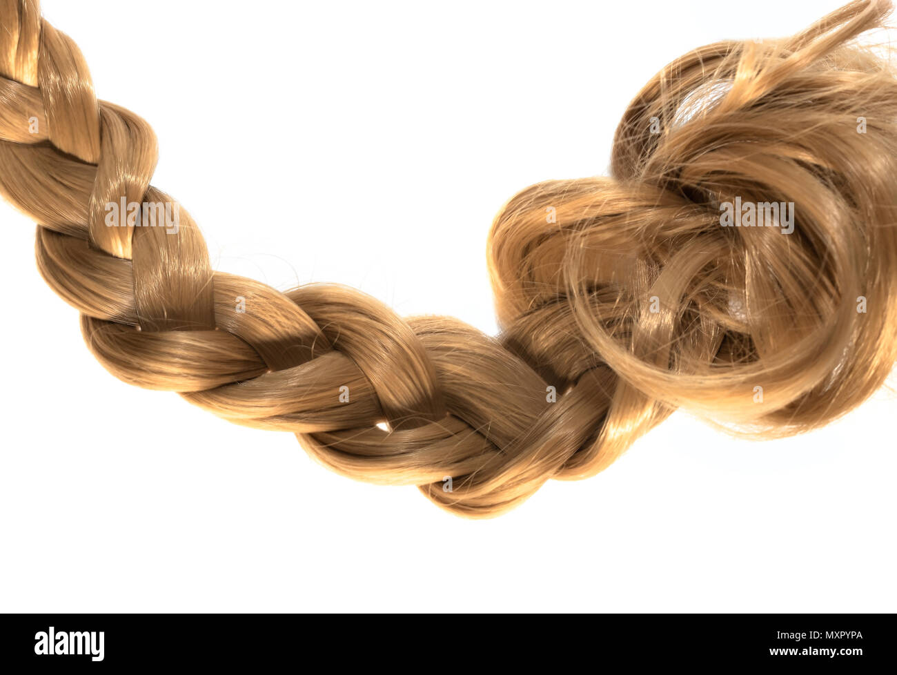 blond plait strand of hair on white background - Stock Image