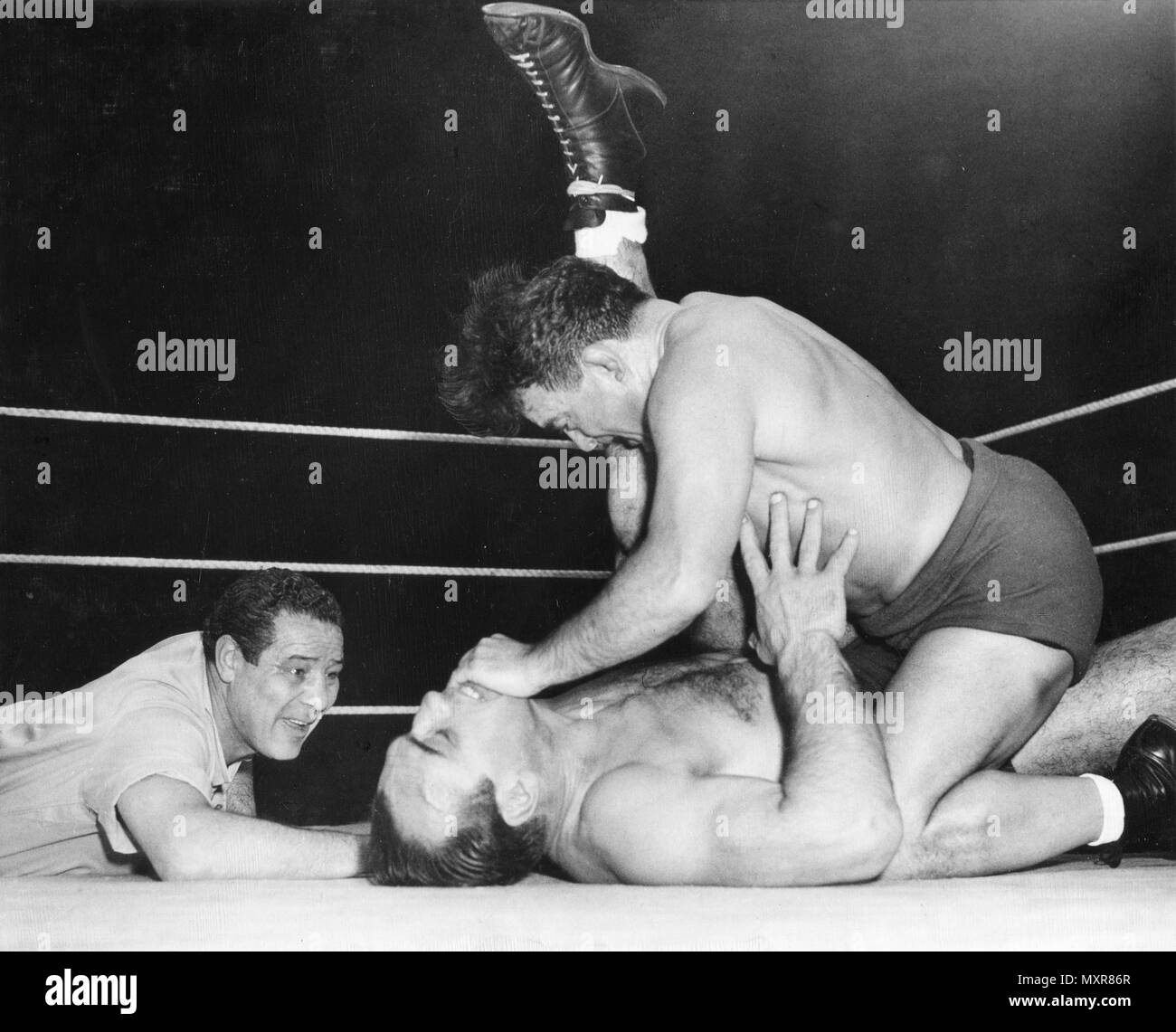 Max Baer (left), former world heavyweight boxing champion, referees a match between wrestlers Primo Carnera (on back), defeated world heavyweight boxing champion by Baer, and Jim Londos. Chicago, IL, 5/5/1950. - Stock Image