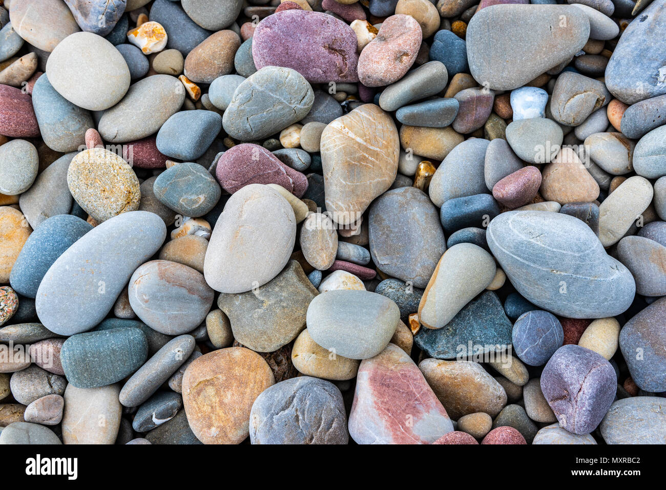 Multicolored pebbles on a beach - Stock Image