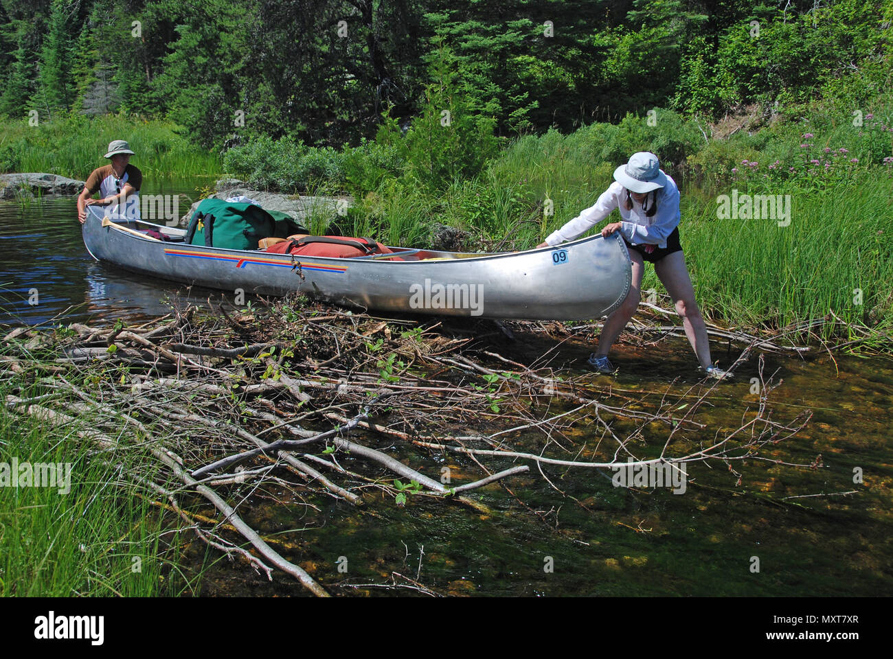 These canoers are pulling their canoe across a beaver dam to get to Slate Lake - Stock Image