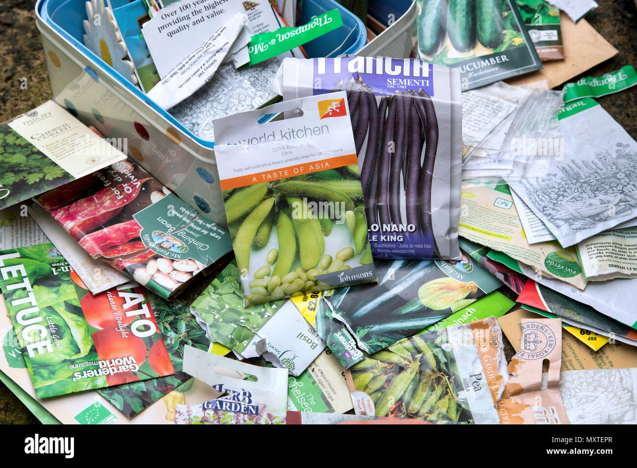 Vegetable plant seed packets - Stock Image